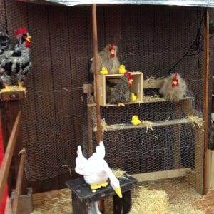 Chickencoop