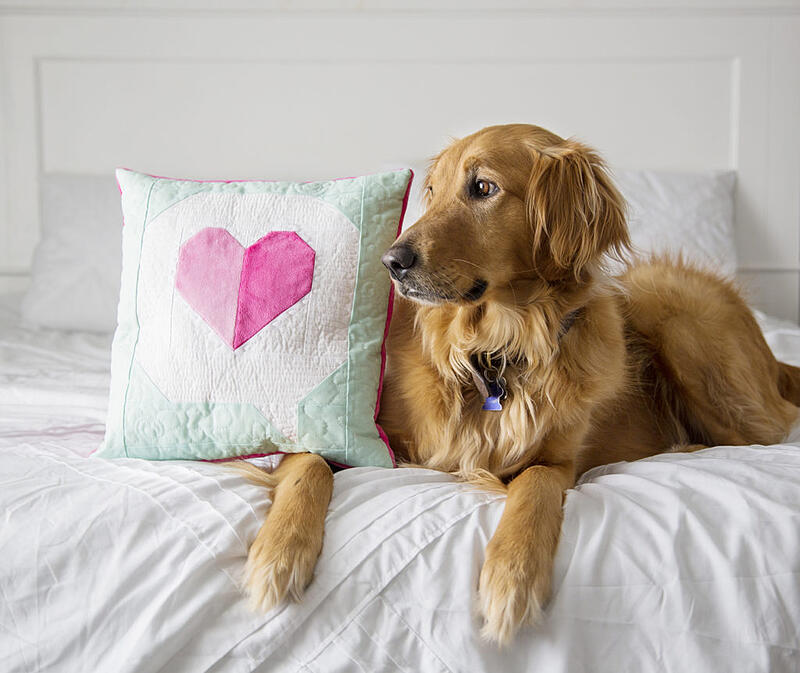 I Heart You Quilt Block in Cuddle with Oscar on bed - dogs love Cuddle