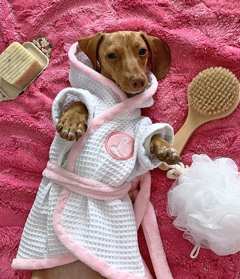 How to Make a Puppy Spa Robe with Cuddle® Minky Fabric