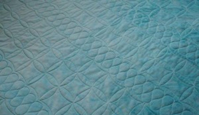 Minky Plush Fabric Machine-Quilted Backing